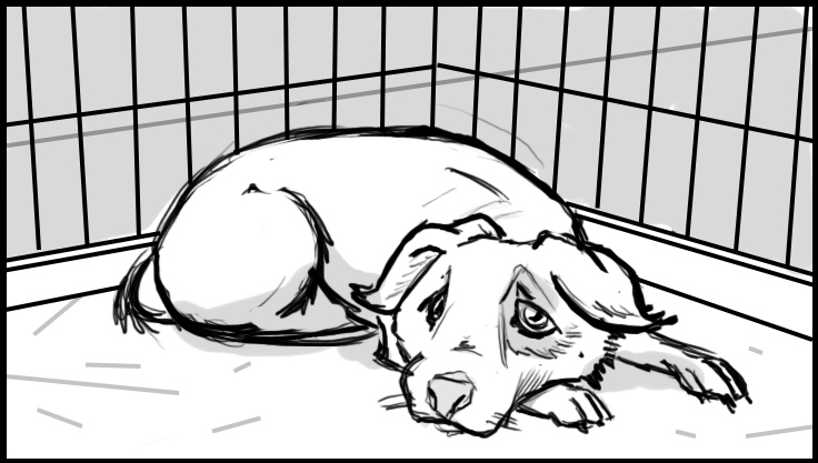 Sad dog in a cage.